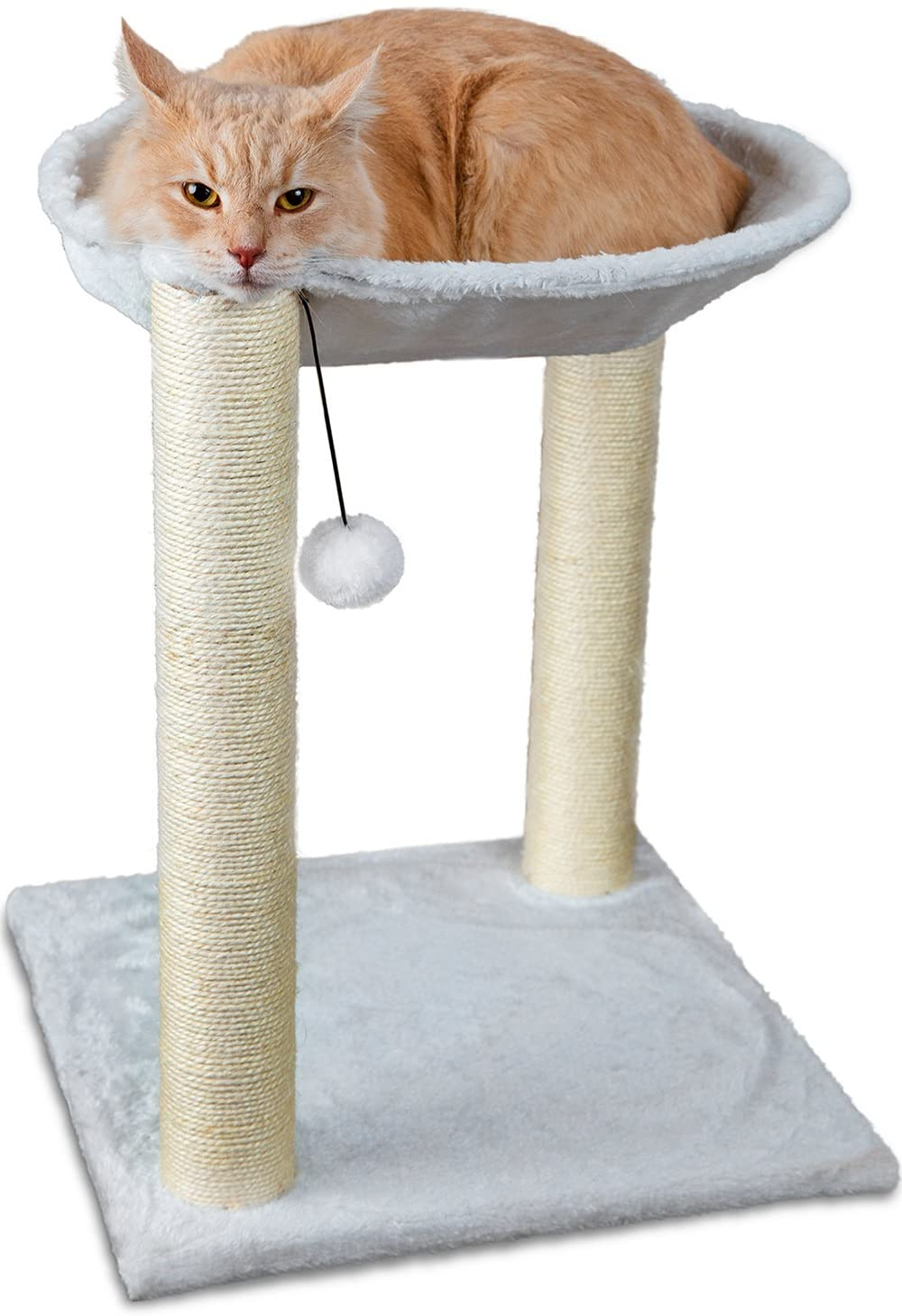 Best Cat Trees With Beds for Large Cats