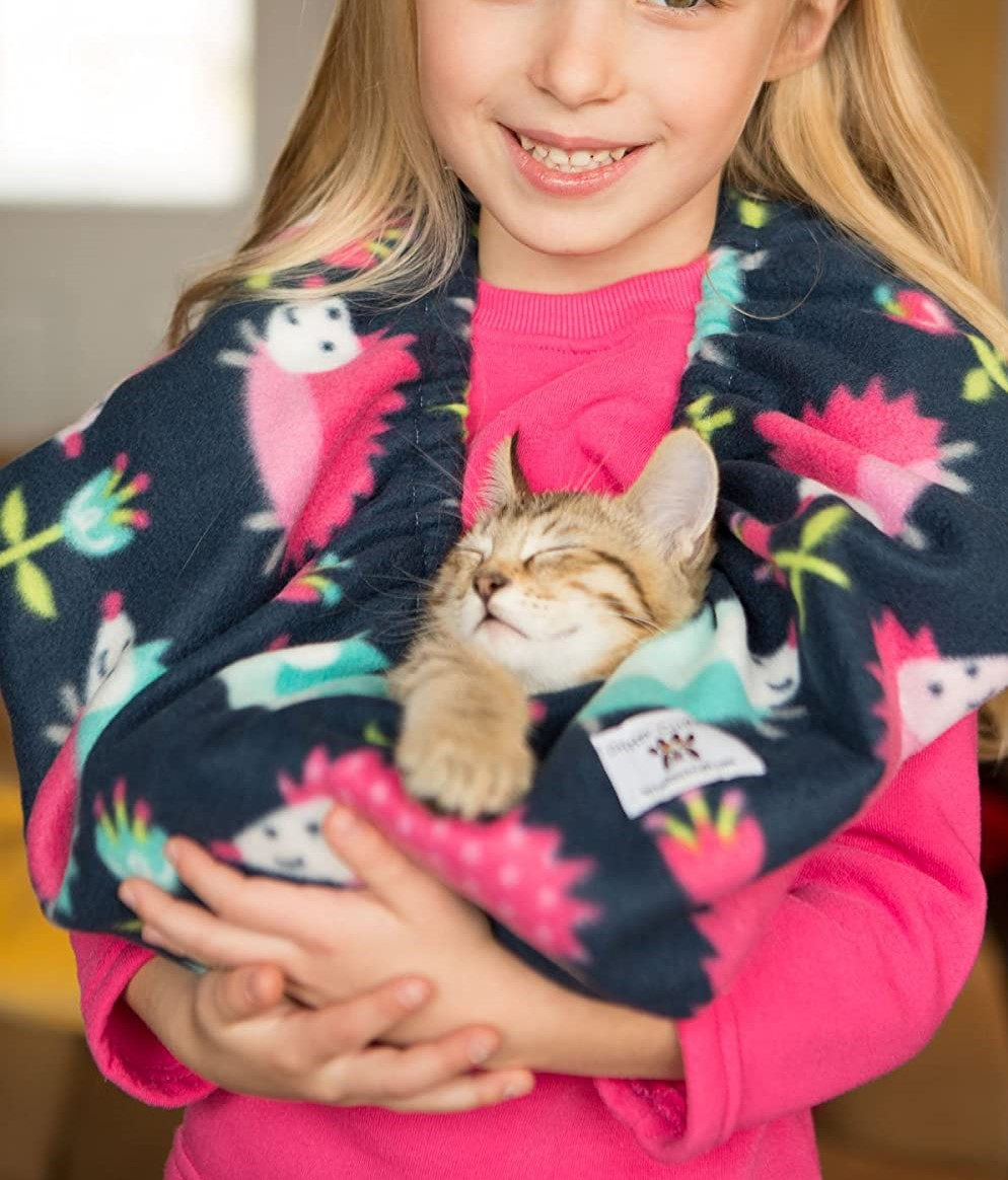 8 Best Cat carrier pouch -Reviewed by Cats