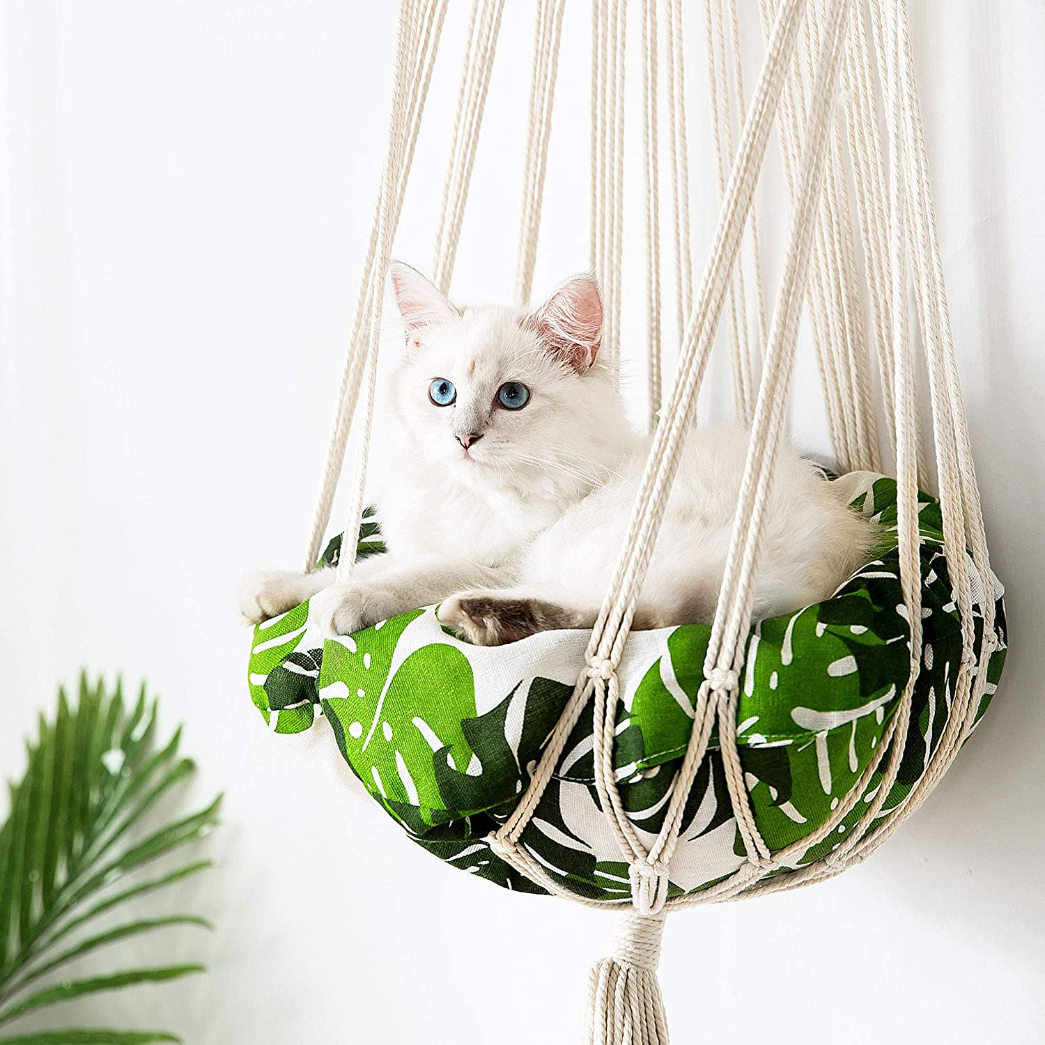 Best Hammock Window Cat Bed for indoor cats