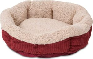 Best Heated Cat Beds for indoor cats.
