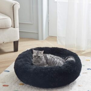 Best Heated Cat Beds for outdoor cats.