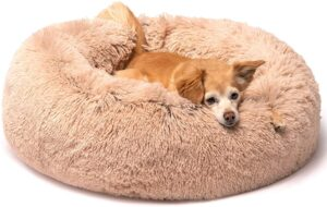 Best Marshmallow Cat Bed for Your Cat